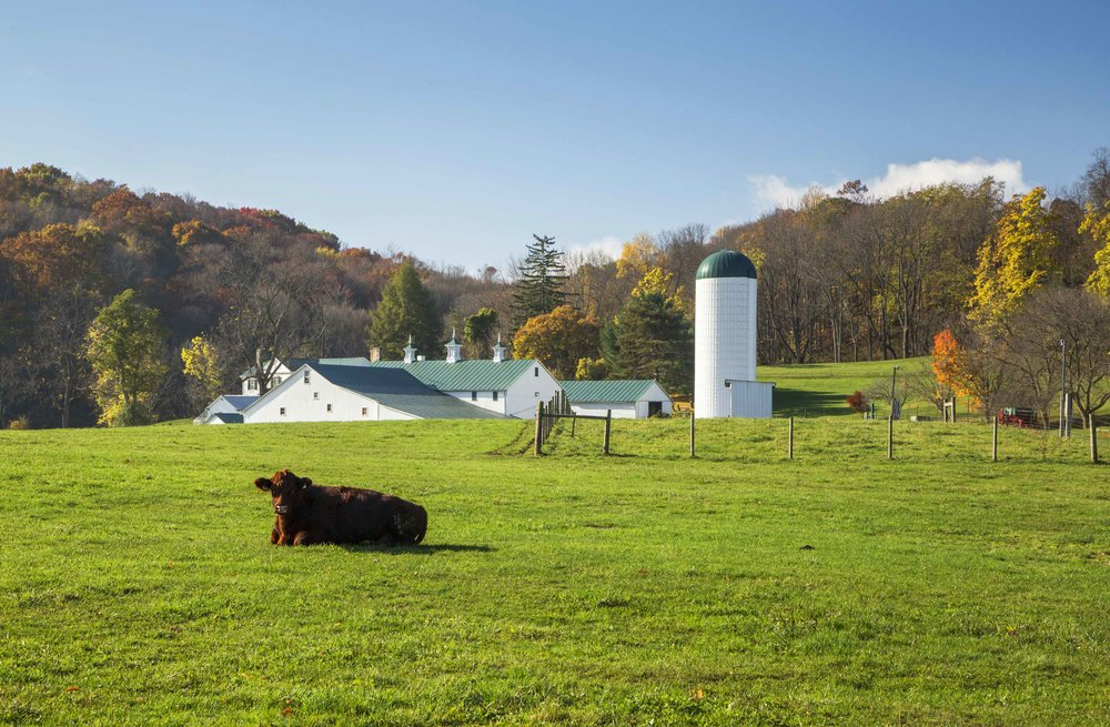 Todd_Sechel_Oct232014_3020-2_Malabar_Farms.jpg