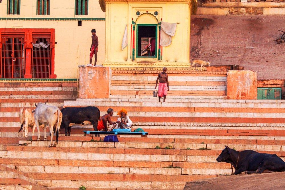 Todd_Sechel_Jun252010_Varanasi_5922_India.jpg