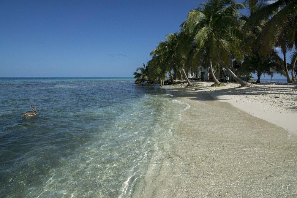 Belize_Jan032015_5759.jpg