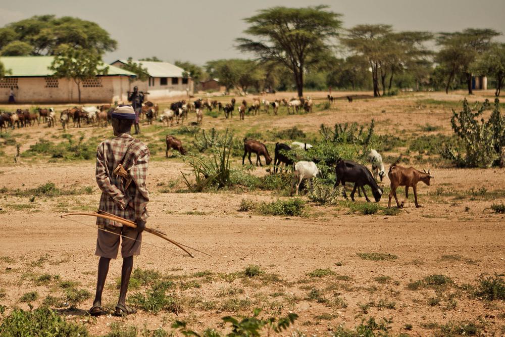 Kenya Ag 1