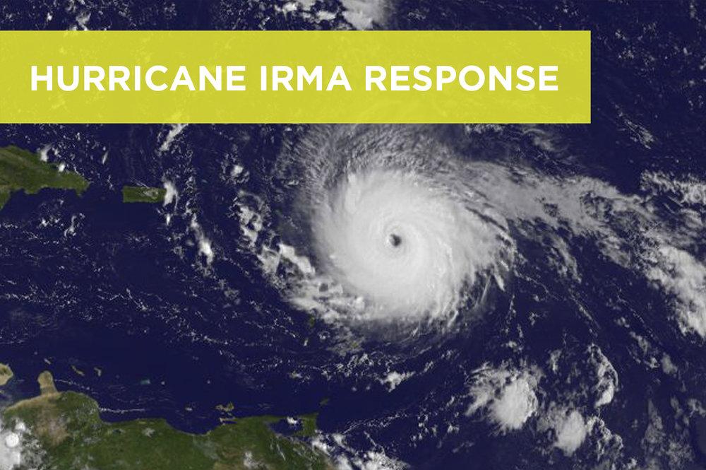 Irma_perspectives.jpg