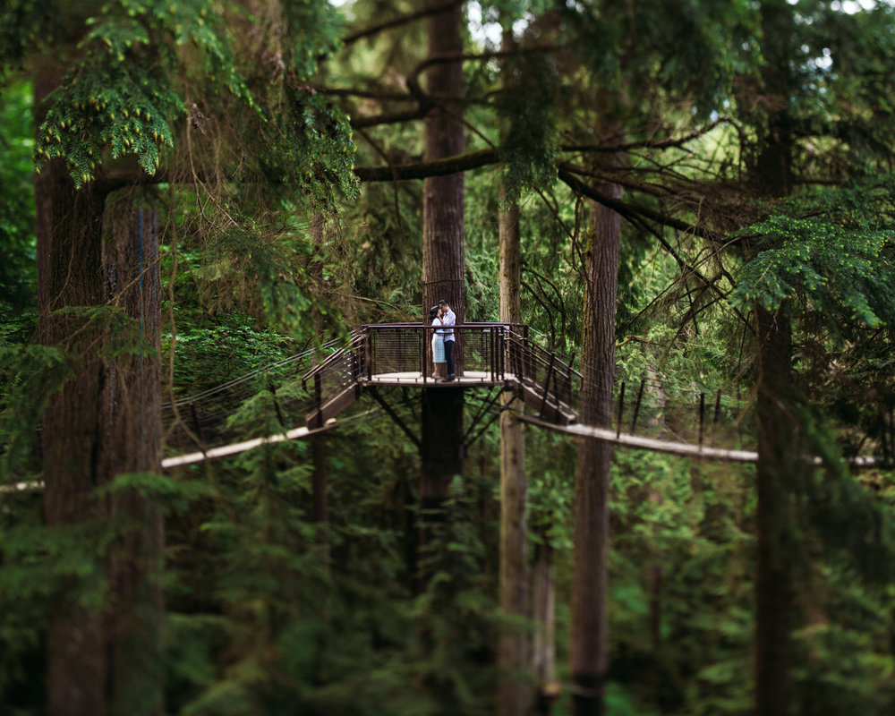 Cap Suspension Bridge // North Van