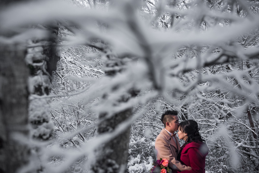 snowy wedding portrait in richmond nature park - victoria wedding photographer