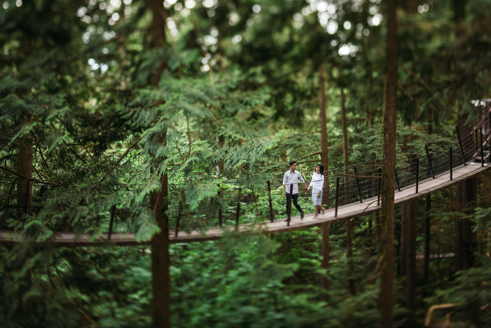 vancouver-island-wedding-photographers-capilano-suspension-bridge-engagement-14.jpg