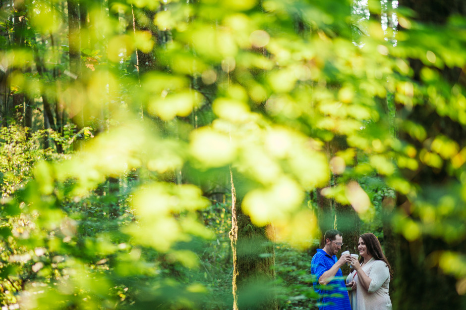 bc-wedding-photographers-campbell-valley-park-engagement-1.jpg