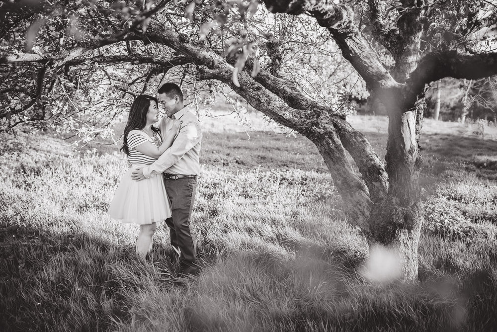 vancouver-island-wedding-photographers-terra-nova-park-engagement-richmond-05.jpg