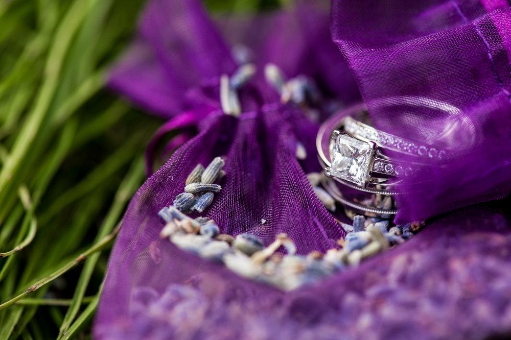 victoria-wedding-photographers-edgewater-lodge-whistler-wedding-47.jpg