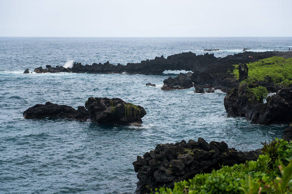 victoria-wedding-photographers-go-on-vacation-to-maui-13.jpg