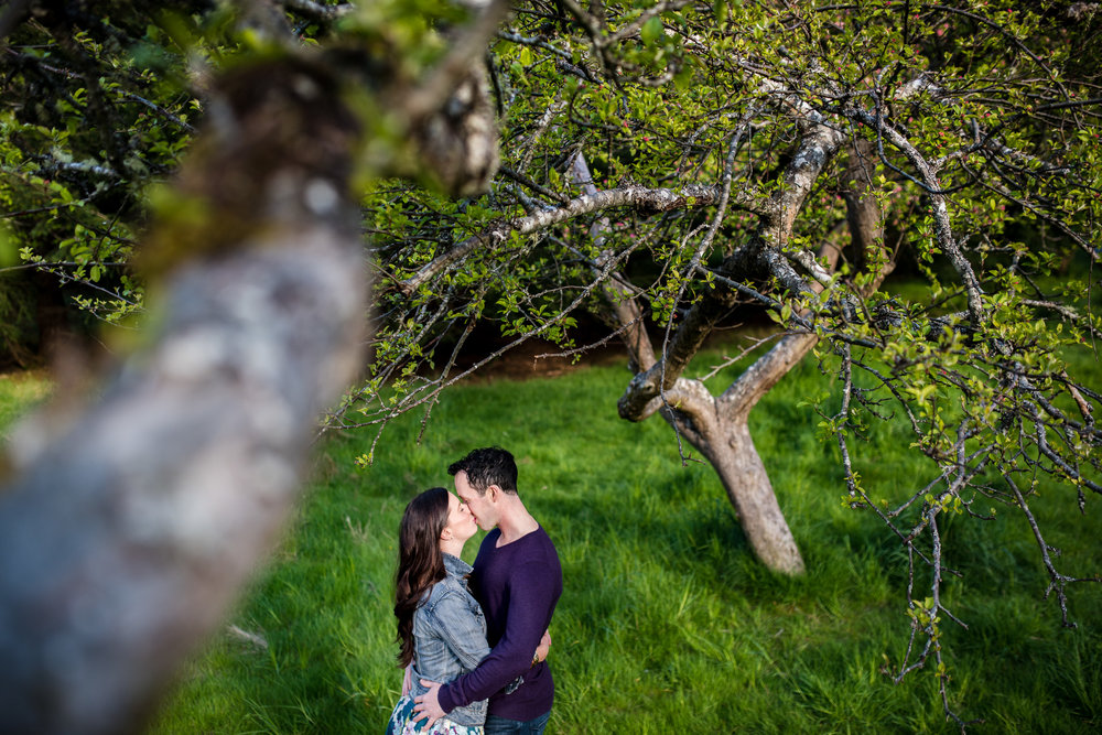 east-sooke-park-engagement-victoria-wedding-photographers-3.jpg