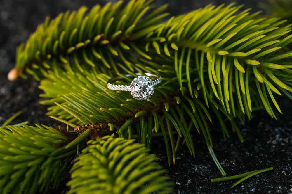 victoria-wedding-photographers-Shirley-beach-proposal-19.jpg