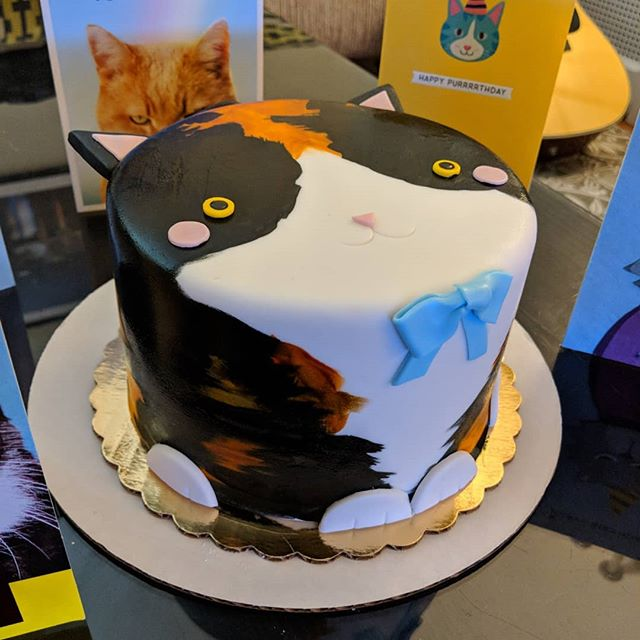 Thank you @whippedbakeshop for this incredible Rosie cake! The resemblance is uncanny! #catcake