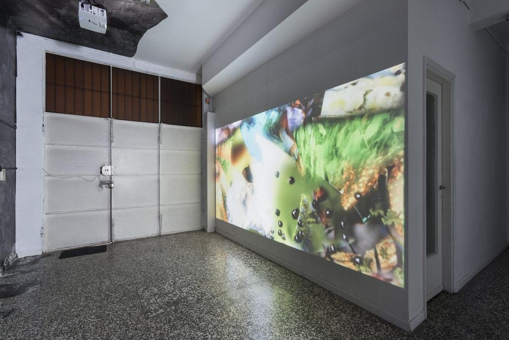 Eva Papamargariti, Facticious Imprints, 2016, serie en curso, vista de instalación