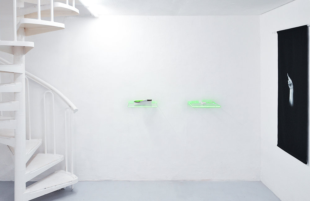 03 Tania Fiaccadori, Sea-Monkeys Cult, installation view, Dimora Artica, 2018_2.jpg