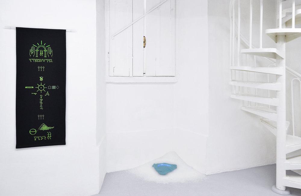 07 Tania Fiaccadori, Sea-Monkeys Cult, installation view, Dimora Artica, 2018_2.jpg