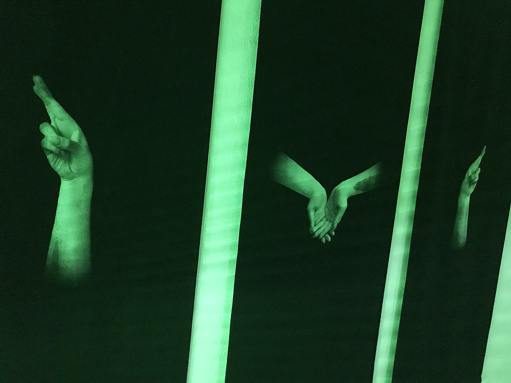 46 Tania Fiaccadori, Sea-Monkeys Cult, nighttime installation view, 2018.JPG