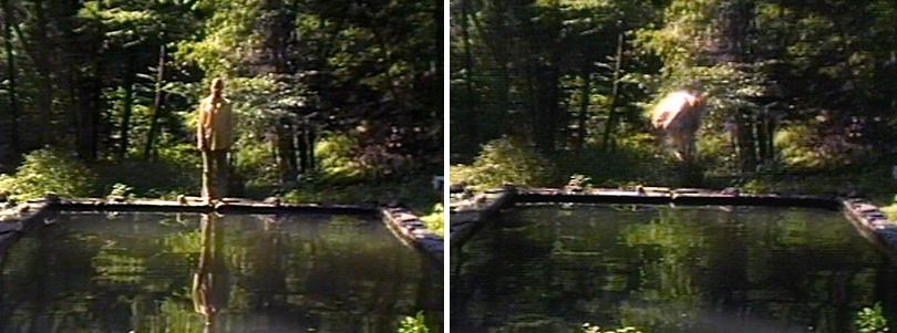 The reflecting pool  (1977-79), Bill Viola