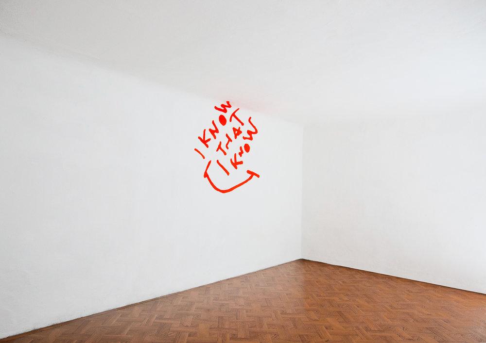 18 Andrea Martinucci - Glory Black Hole, exhibition view, Dimora Artica (ph Andrea Cenetiempo).jpg