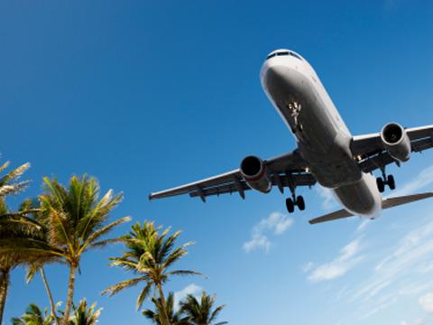 plane over palms.jpg