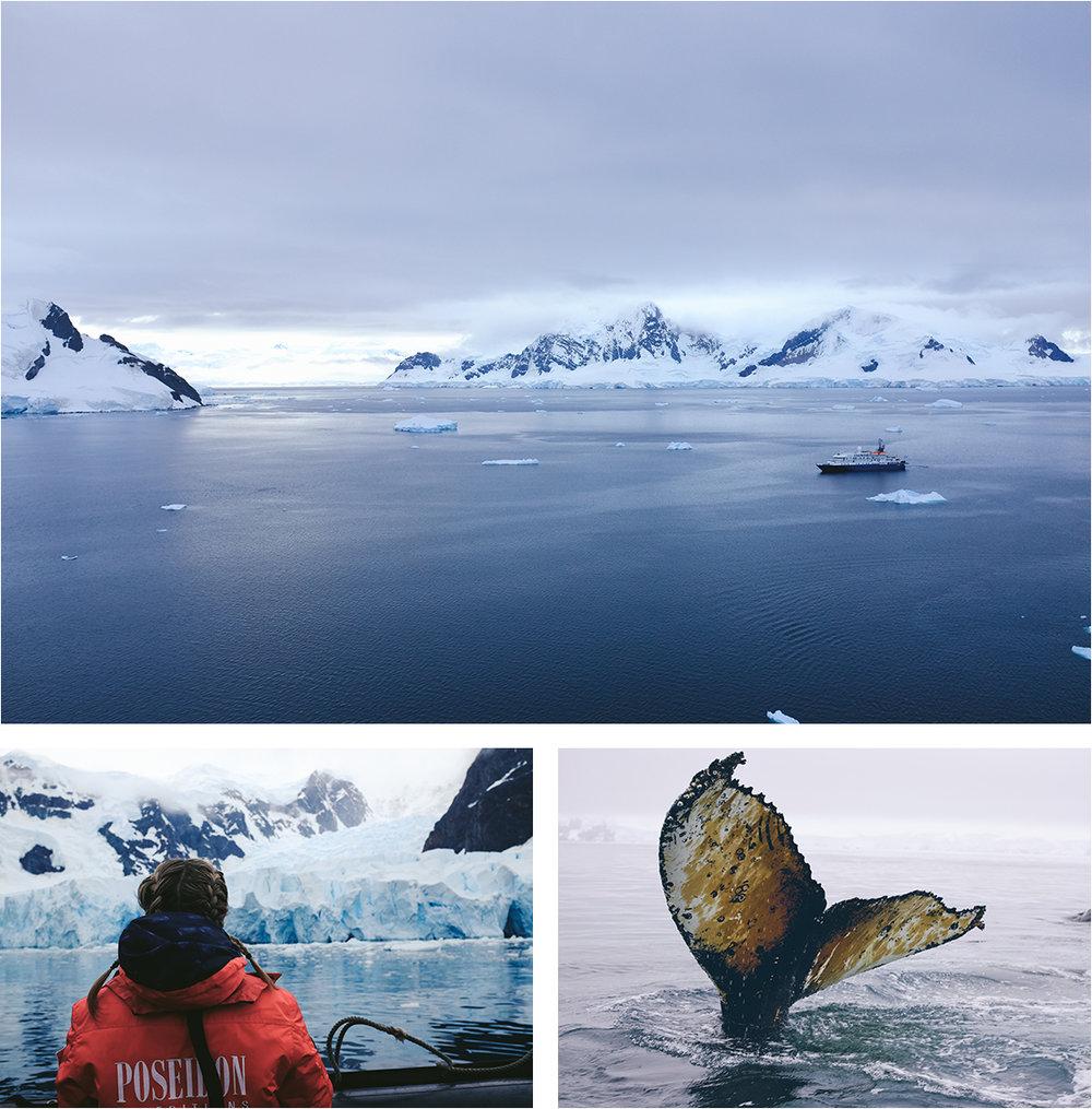 NA_Apr17_Antarctica_IMGComp01.jpg