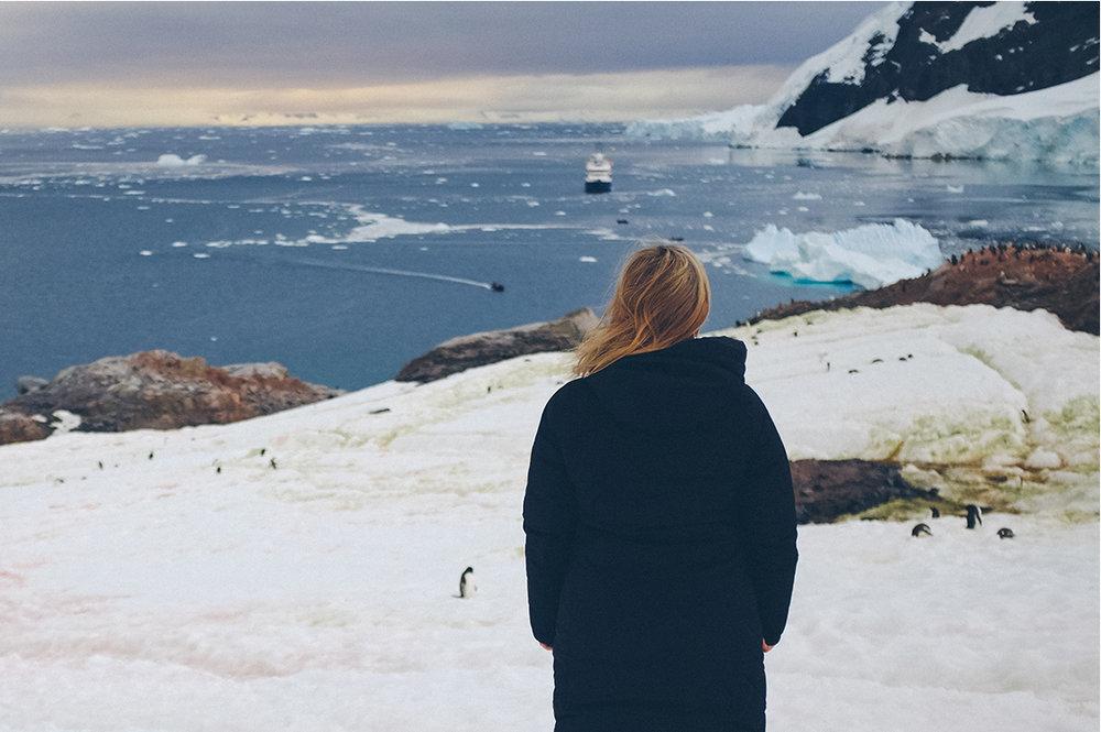 NA_Apr17_Antarctica_IMGComp09.jpg