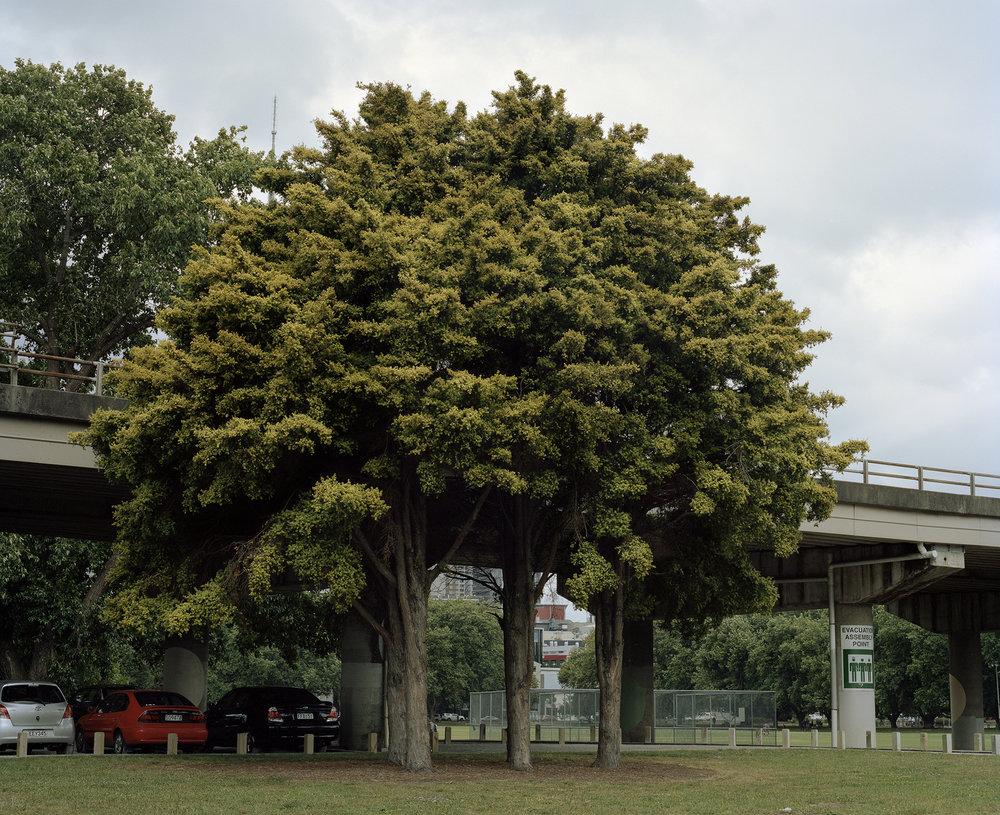 Victoria Park, 2014