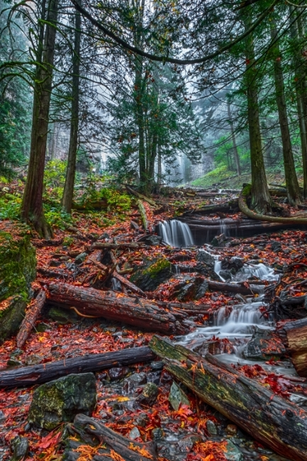 ~~~~Bridal Veil Creek~~~~