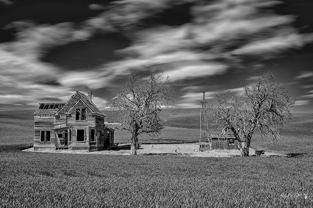 Charles E Nelson House Near Dufur, Oregon.  One of the most photographed buildings in Oregon.  For a very detailed history of this beautiful property please click on the link below. https://www.flickr.com/photos/dmichaelschmidt/40946400934/in/photostream/ Thank you very much for viewing my work, and thank you VERY MUCH for more than 2.1 MILLION views!! That's unbelievable!! I really very much appreciate all the support I receive from other Flickr members.  Receiving favorites and comments on my images is always appreciated!  I'm glad so many people enjoy my work. :-) Please Like me on  FaceBook  Please don't forget to check out my other websites, which can be accessed through:  MichaelSchmidtPhotography  If you'd like to contact me about my photography, please  email me here  Thanks again! #MichaelSchmidtPhotographyVancouver  #MSPixVancouver  #ThisIsWhatISee  #abandoned  #BoydOregon  #OregonIsAwesome  #TheDallesOregon  #EmmersonLoopRoad  #WascoCounty  #FormattHitech  #NelsonHomestead #NelsonHouse  #CharlesENelsonHomestead #abandonedplaces #abandoned_junkies #abandon_seekers #abandonedplaces #abandoned_addiction