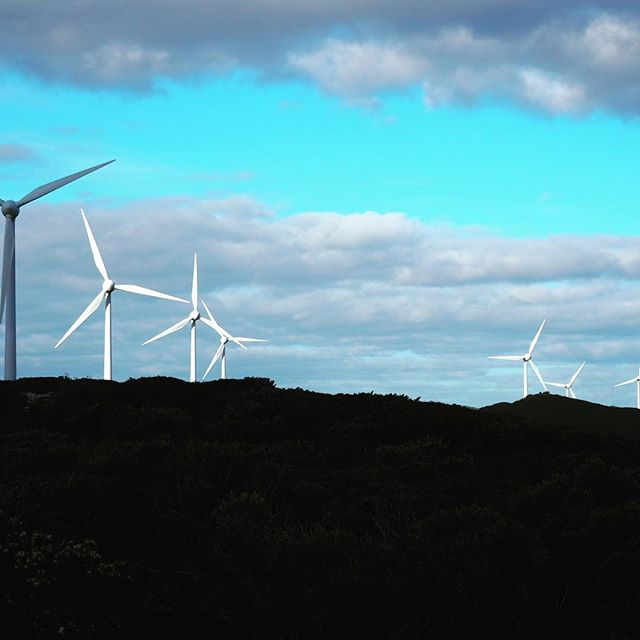 Albany windfarm, clean energy just down the road from stableBASE