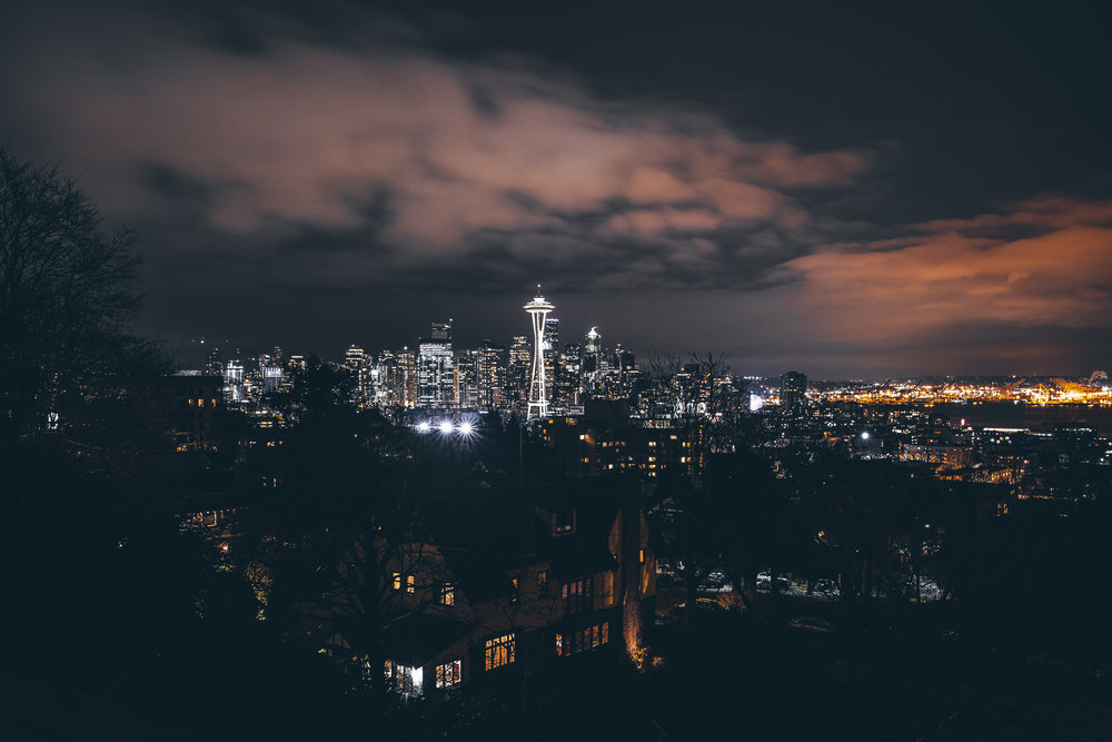 nightskyline copy.jpg
