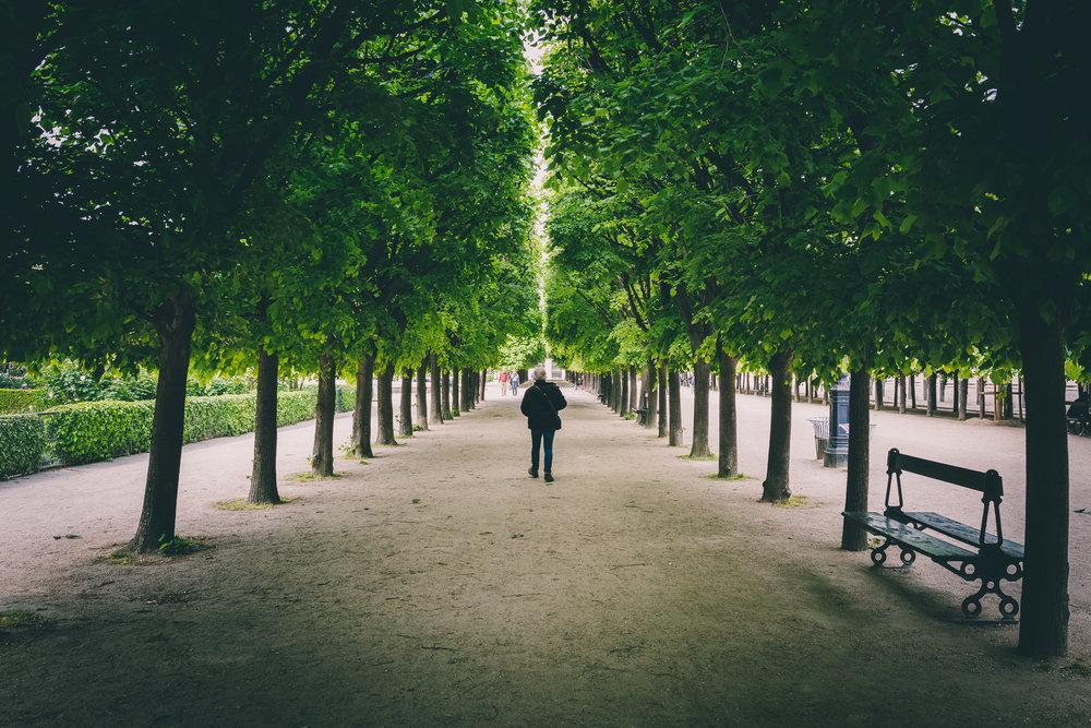 gardens copy.jpg