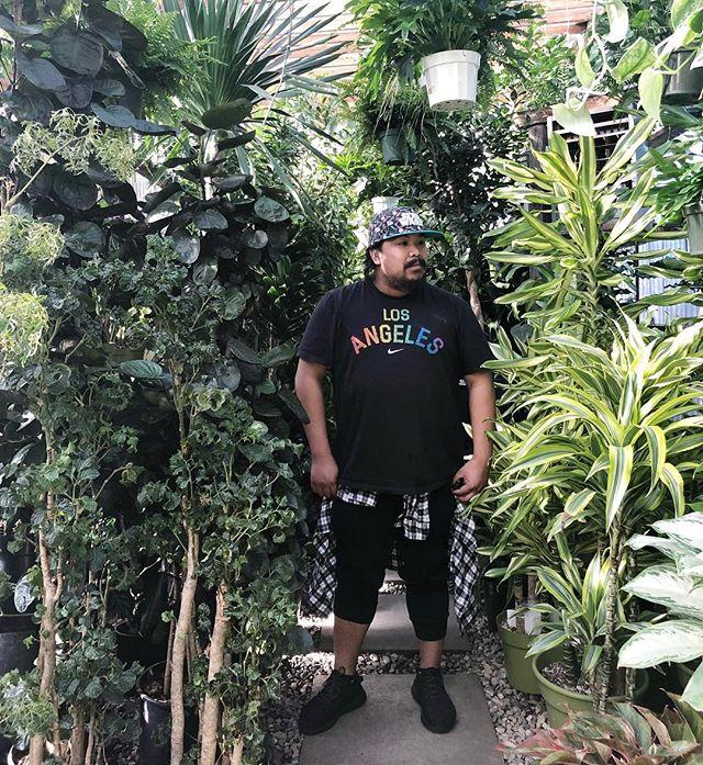 Plant shopping at @mickeysplants today!! Check my plant haul stories to see what I got!! . . . . . . #houseplantclub #plantsofinstagram #urbanjungle #plantsmakepeoplehappy #urbanjunglebloggers #plantlove #houseplant #iloveplants #plantparenthood #planthoarder #plantaddict #houseplants #plantenabler #plantlover #jungalow #greenthumb #plantnerd #houseplantclub #crazyplantlady #plantsofig #myplantaesthetic #indoorgarden #therealhouseplantofig #thehouseplantco