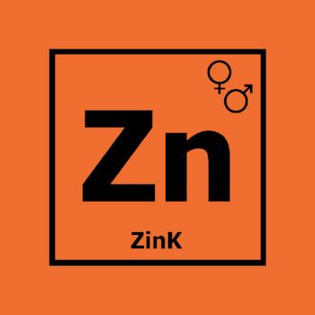 zink logo final.png