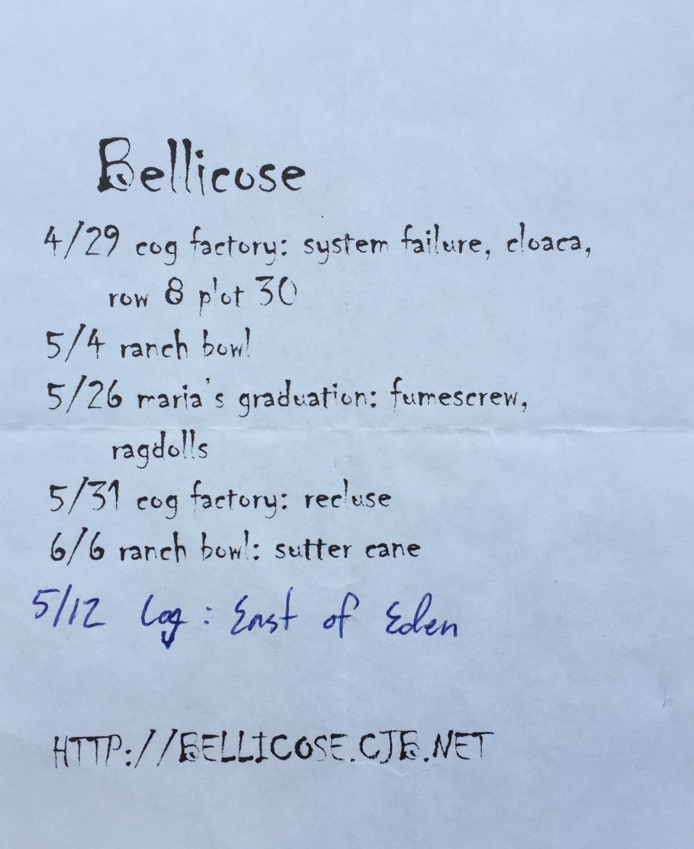 bellicose11.jpg