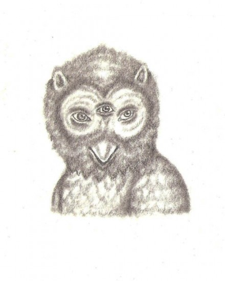 MARSH OWL, Graphite on Handmade Indian Paper, 8 1/2 x 6""