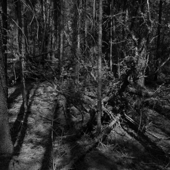 """PANGISHIMO GISESS, Digital Inkjet Photograph, Image Size 17 x 17"""", 27 x 27"""", or 35 x 35"""""""