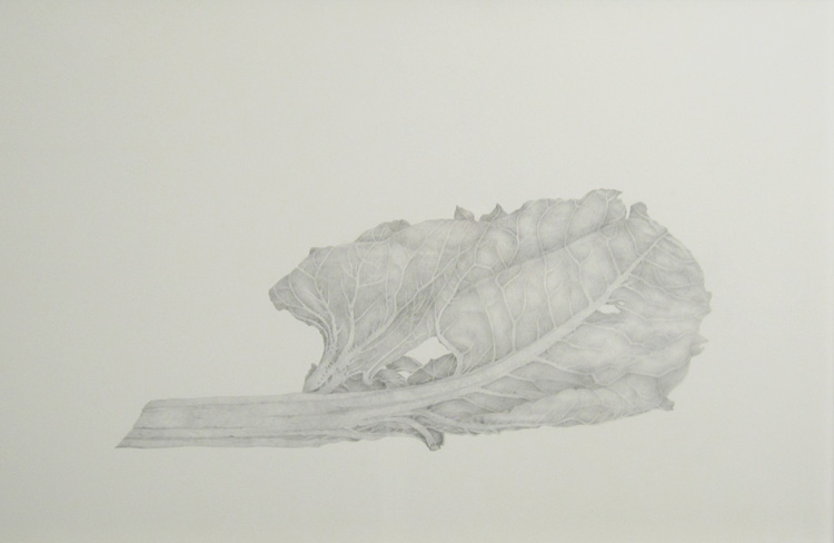 "DE RERUM NATURA, Silverpoint Drawing on Costed Bristol Board, 12 x 18 1/2"" framed 25 1/2 x 19 1/4"""