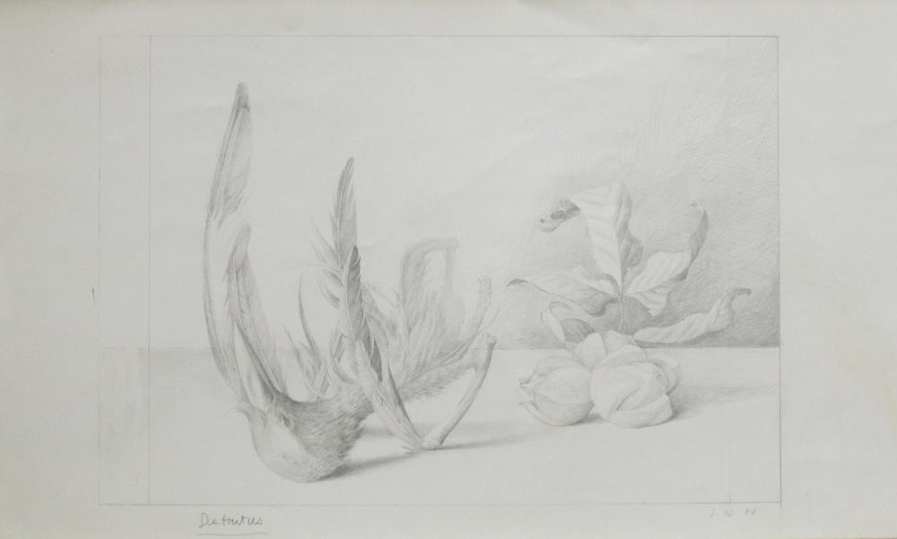 """DETRITUS, 1994, Pencil on Paper, 14 x 23 1/8"""""""