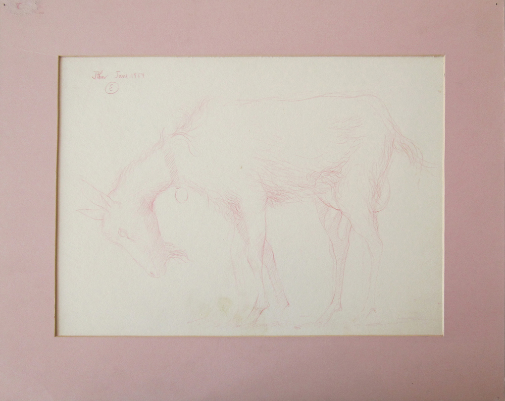 UNTITLED - PINK GOAT, June 1954, Color Pencil on Paper, 11 x 15 1/2""