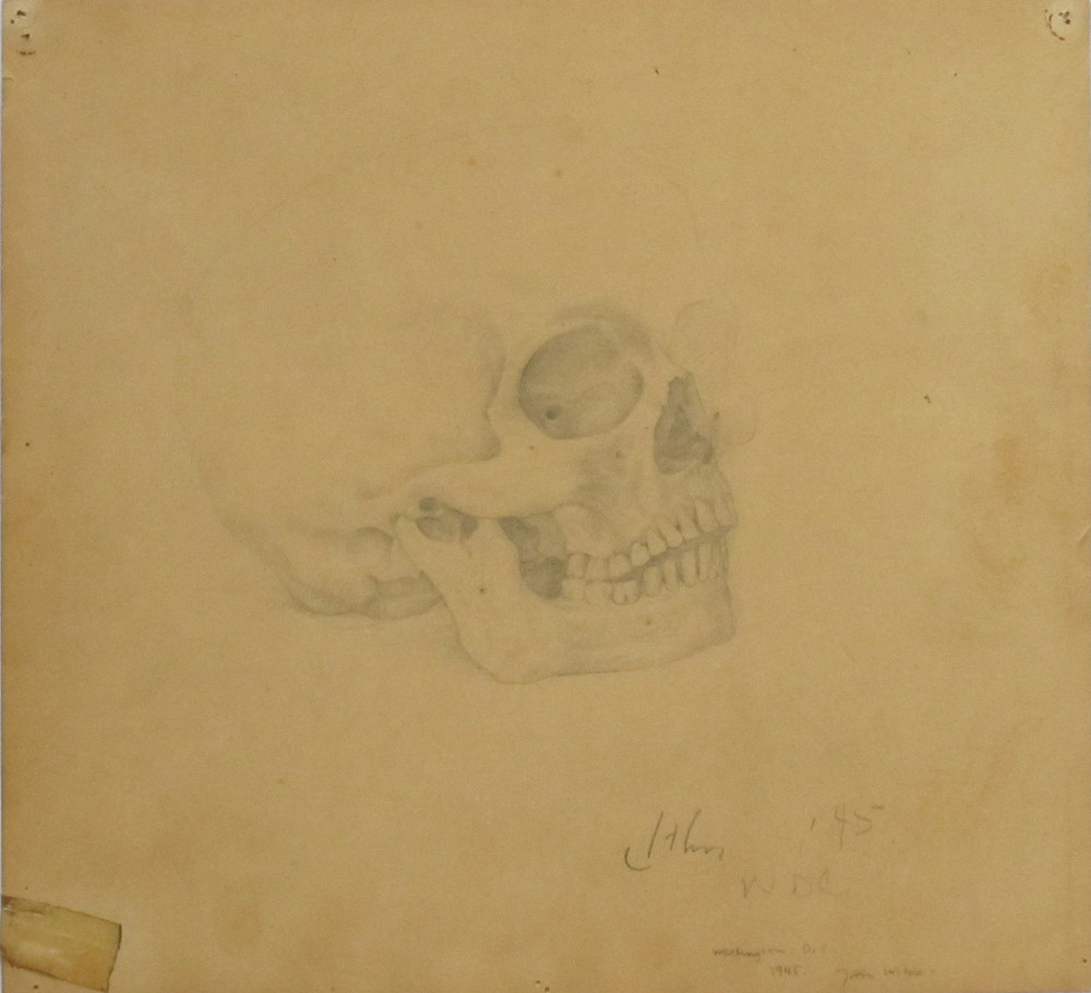 UNTITLED - SKULL STUDY, 1945, Pencil on Fabric Backed Paper, 10 1/4 x 11""