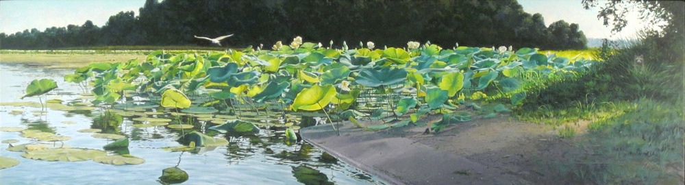 James Winn, LOTUS LILIES NO. 28, Acrylic on Panel, 12 1/2 x 48""