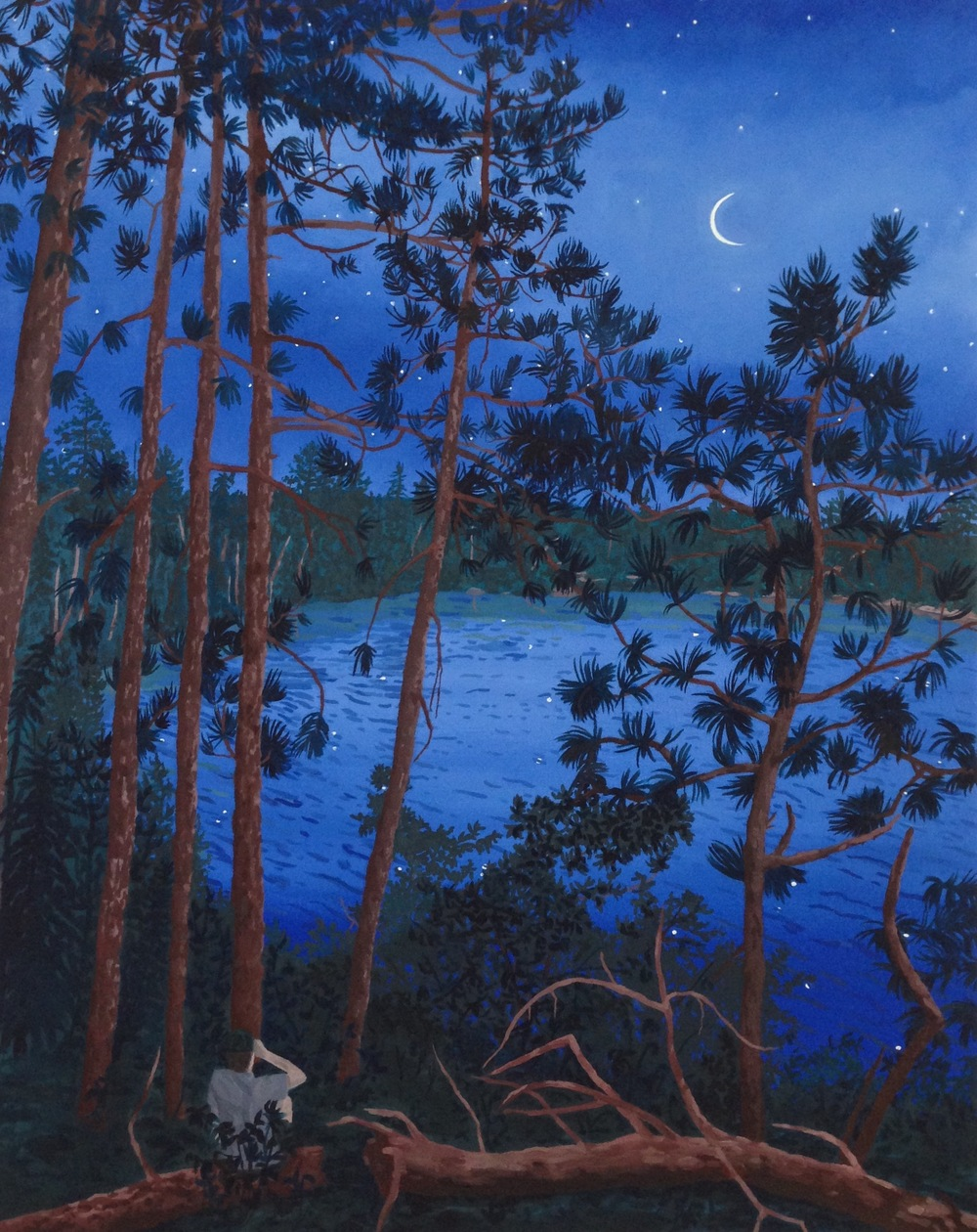 Breehan James, Stargazing on Ester Lake, oil on canvas, 24x30 inches