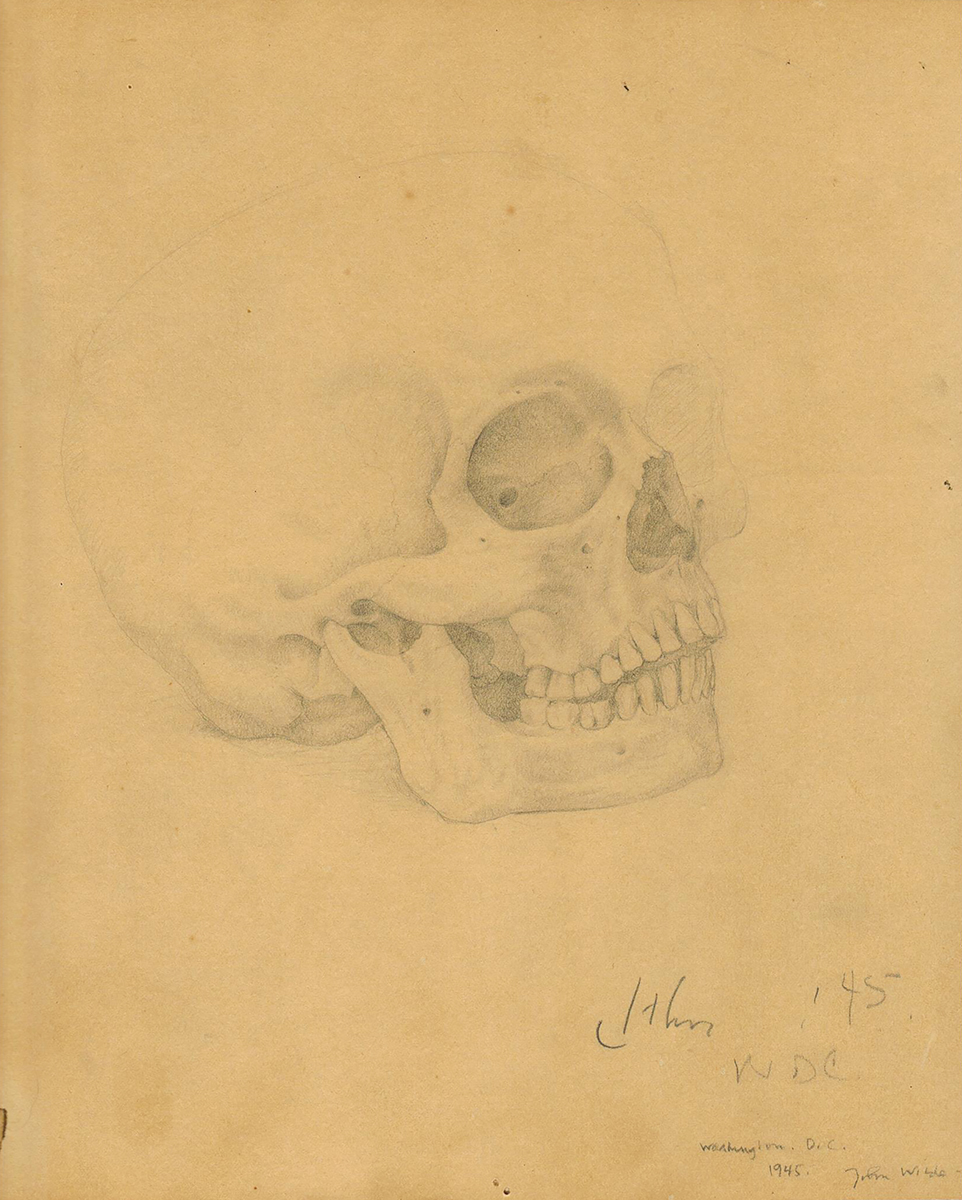 UNTITLED (SKULL STUDY), 1945, Pencil on Fabric Backed Paper, 10 1/4 x 11""