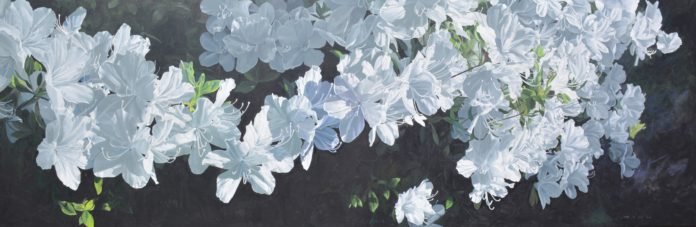 "James Winn, ""Azaleas,"" acrylic on panel, 24 x 72 in. © Tory Folliard Gallery"