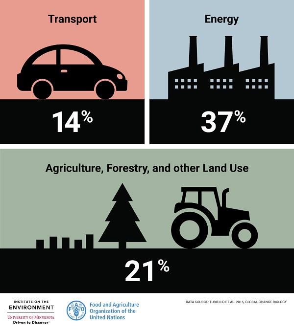 "source: ""How Does Agriculture Change Our Climate?""  www.environmentreports.com/foodmatters/"