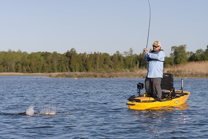 proangler14-action-rob-wendle-smallie-60-sm.jpg