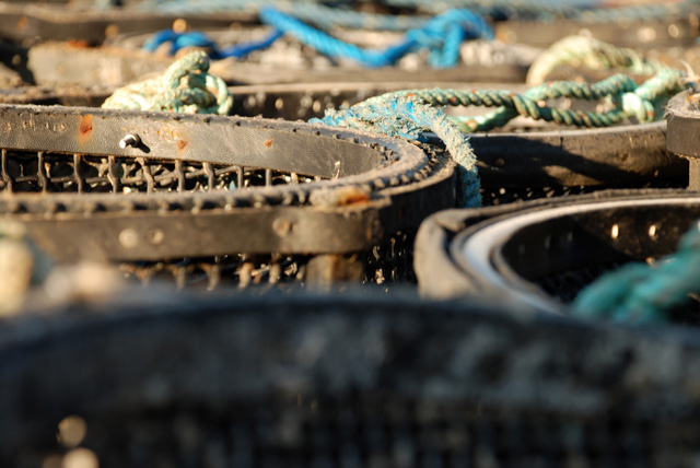 Lobster-Pots-in-Lyme-Regis-.jpg
