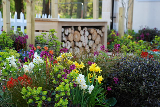 RHS Flower Show Cardiff 2015 Lisa Cox A Front Garden for Victoria Park Mazda.jpg