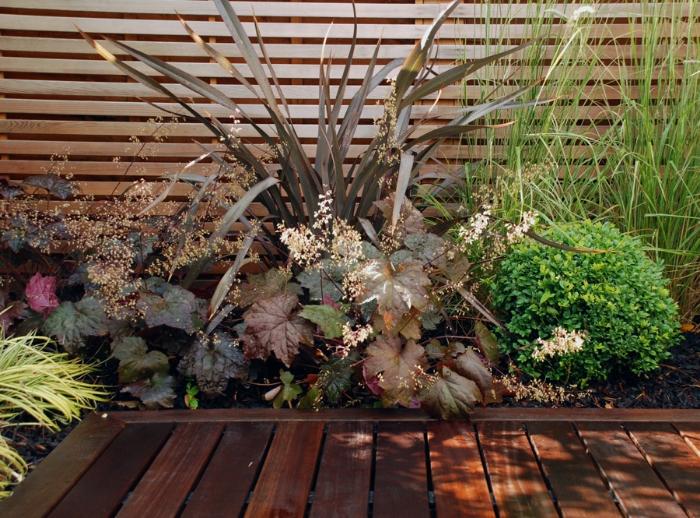 courtyard-planting-lisa-cox.jpg