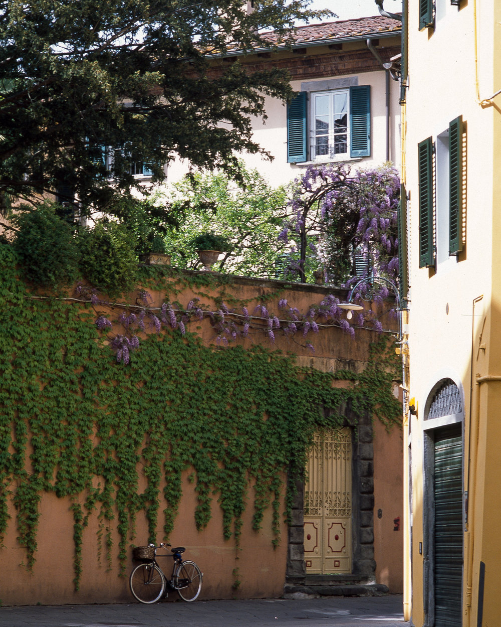 A quiet back street in Lucca, Tuscany