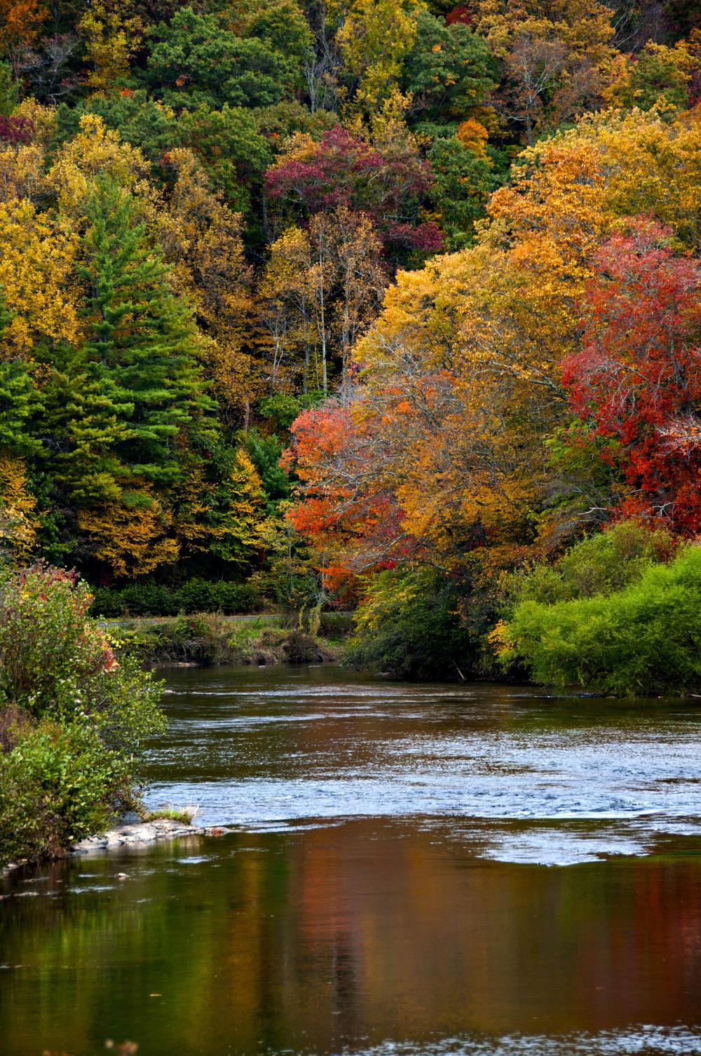 new river fall ref.jpg